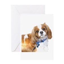 Toby Greeting Card