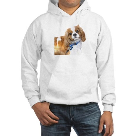 Toby Hooded Sweatshirt
