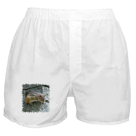 Eastern Chipmunk Boxer Shorts