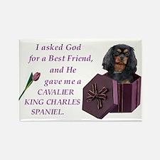 Cavalier (Black & Tan) Rectangle Magnet (100 pack)