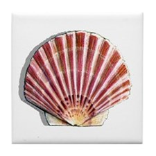 Pink Scallop Shell Tile Coaster