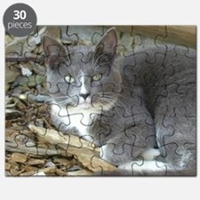 Ashes Again Puzzle
