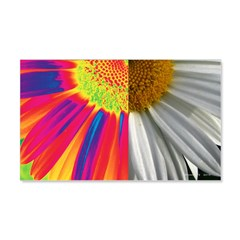halfway daisy - all color Wall Decal
