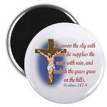 Inspirational Bible sayings Magnet