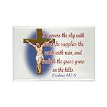 Inspirational Bible sayings Rectangle Magnet (10 p