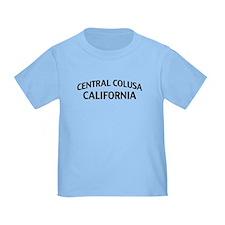 Central Colusa California T