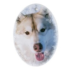 Golden Siberian Husky Ornament (Oval)