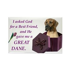 Great Dane (Fawn) Rectangle Magnet