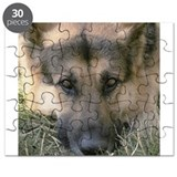 Dogs/german shepherd Puzzles