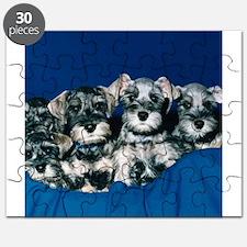 Schnauzer Puppies Puzzle