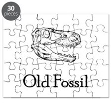 Old Fossil Puzzle