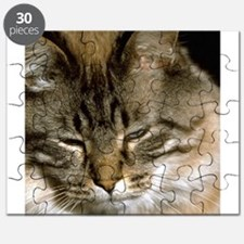 Sleepy Cat Puzzle