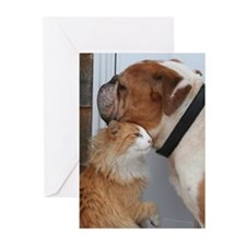 Unique Bully Greeting Cards (Pk of 10)