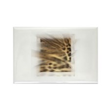 Animal Print Rectangle Magnet (10 pack)
