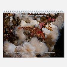 North Pacific Ocean Life 2013 Wall Calendar v6