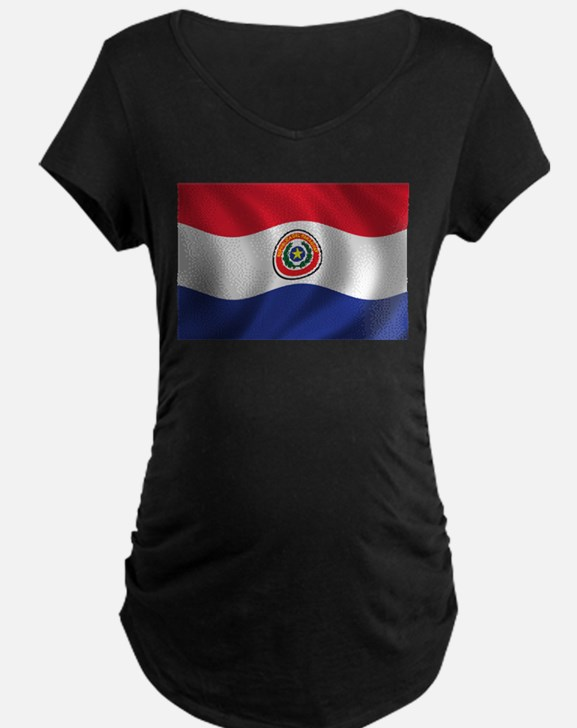 Flag of Paraguay T-Shirt