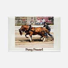 Welsh Pony (Sect. C) Rectangle Magnet