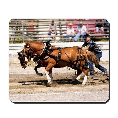 Welsh Pony (Sect. C) Mousepad