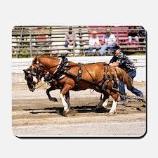 Welsh Pony (Sect. C) Mousepad