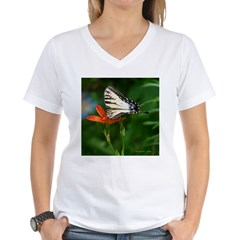 .swallowtail on candy lily. Shirt