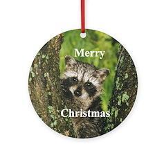 Baby Raccoon Ornament (Round)