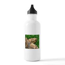 .tortoise. Water Bottle