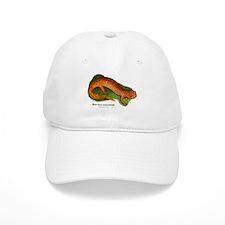 Red Salamander Baseball Cap