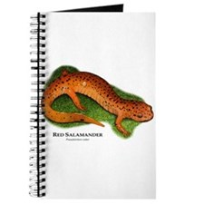 Red Salamander Journal