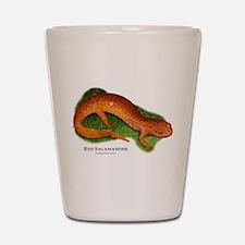 Red Salamander Shot Glass