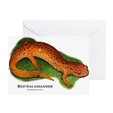 Red Salamander Greeting Card