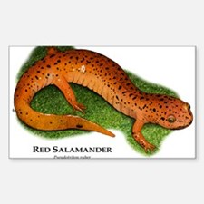 Red Salamander Sticker (Rectangle)
