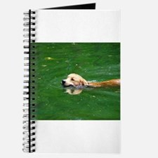 Swim Fetch Journal