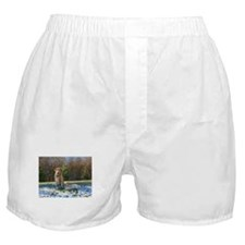First Snow Boxer Shorts
