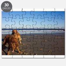 Anticipation Golden Retriever Puzzle