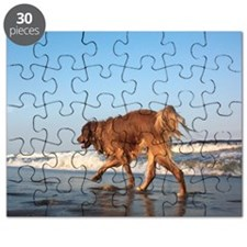 Golden and the Ocean Puzzle