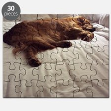 Pampered Puzzle