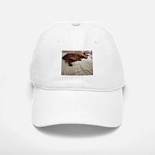 Pampered Baseball Baseball Cap