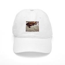 Pampered Baseball Cap