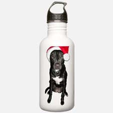 Santa Dog Water Bottle
