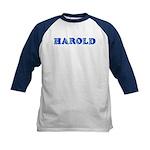 Harold Kids Baseball Jersey
