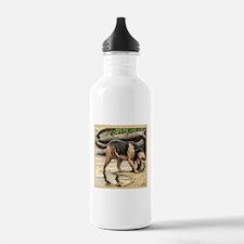 Unique Otterhound Sports Water Bottle