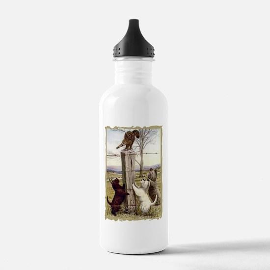 Scottie, Westie & Skye Terrie Sports Water Bottle