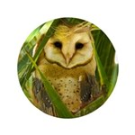 Palm Tree Owlet 3.5