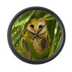 Palm Tree Owlet Large Wall Clock