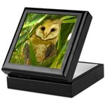 Palm Tree Owlet Keepsake Box