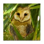 Palm Tree Owlet Tile Coaster