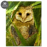 Palm Tree Owlet Puzzle