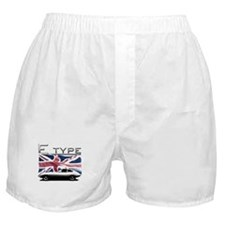 Funny Classic Boxer Shorts