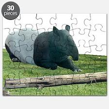 Helaine's Tapir Puzzle