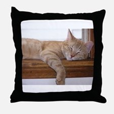 Comfy Munchie Throw Pillow